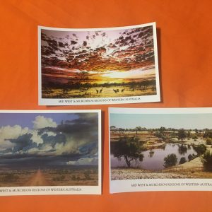 Ailsa Small Postcards